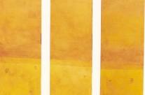 Lieu secret 2001 ( triptyque 3x200x50 )